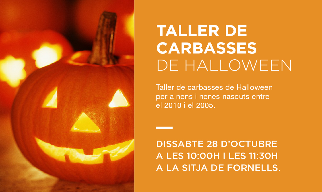 taller-carbasses